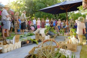 Byron Hinterland Seed Savers meetup