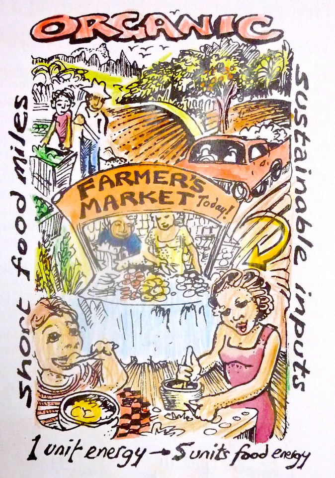 "The organic farmers' market. ""Seed to Seed"" illustration by Dr. Liz Elliot"