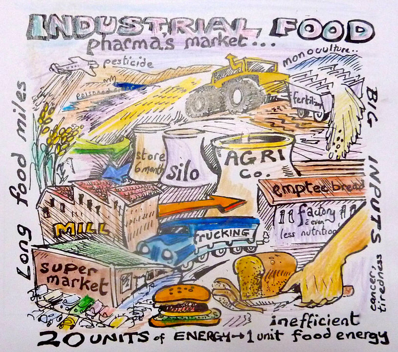 "The inefficiency of the Industrial Food Chain. Illustration from ""Seed to Seed"" by Dr. Liz Elliot"
