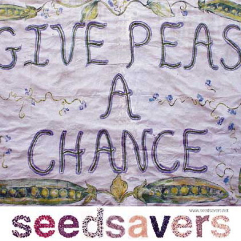 "Alan Mordens ""gives back"" with Give peas a chance."